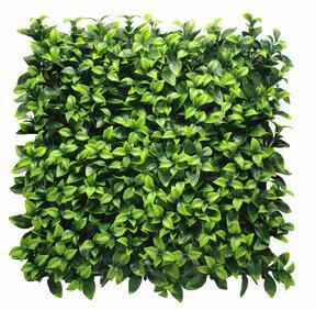Gardenia umetna plošča - 50x50 cm