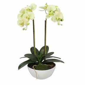 Orhideja iz umetnega masla 50 cm