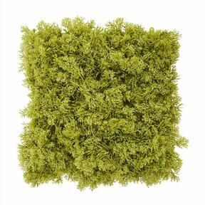 Plošča iz umetnega zelenega maha - 25x25 cm