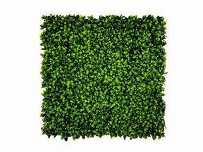 Umetna listna plošča Citrus Maxima - 50x50 cm