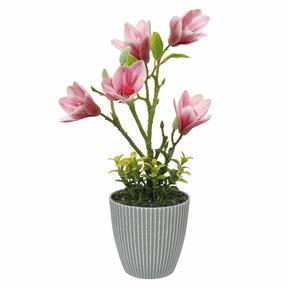 Umetna magnolija v cvetličnem loncu 21 cm