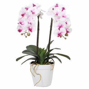 Umetna orhideja 43 cm