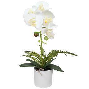 Umetna orhideja bela s praprotjo 37 cm