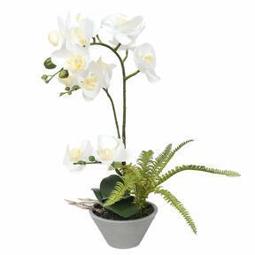 Umetna orhideja bela s praprotjo 43 cm