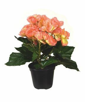 Umetna rastlina Begonia oranžna 20 cm