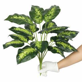 Umetna rastlina Dífenbachia 50 cm