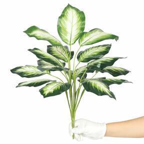 Umetna rastlina Dífenbachia bela 50 cm