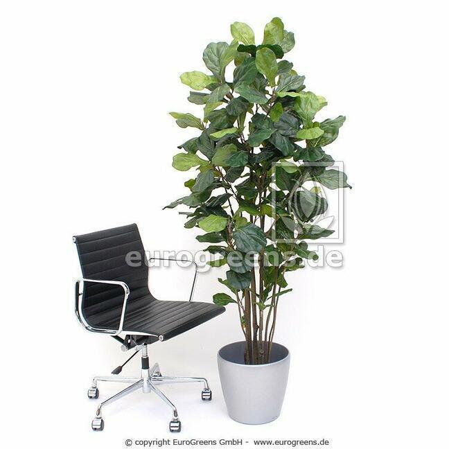 Umetna rastlina Figovo drevo 180 cm