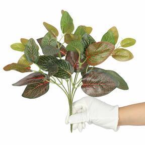 Umetna rastlina Fitonia rdeča 25 cm