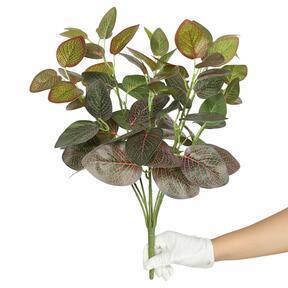 Umetna rastlina Fitonia rdeča 45 cm