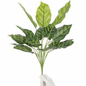 Umetna rastlina Kalatea 50 cm
