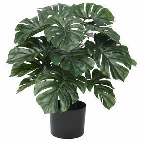 Umetna rastlina Monstera 60 cm