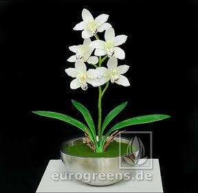 Umetna rastlina Orchidea Cymbidium krema 50 cm