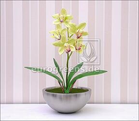 Umetna rastlina Orchidea Cymbidium svetlo zelena 50 cm