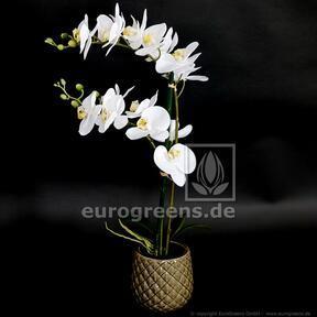 Umetna rastlina Orhideja bela 65 cm