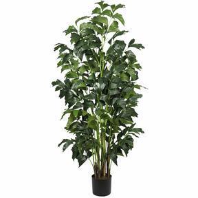 Umetna rastlina Palicha 160 cm