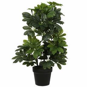 Umetna rastlina Shefler 60 cm