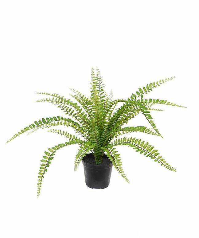 Umetna rastlina Šprica 45 cm