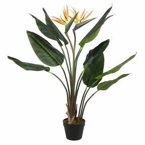 Umetna rastlina Streljanje 110 cm