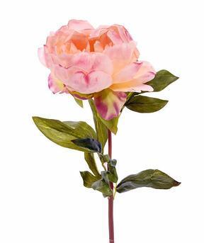 Umetna roža potonika roza 55 cm