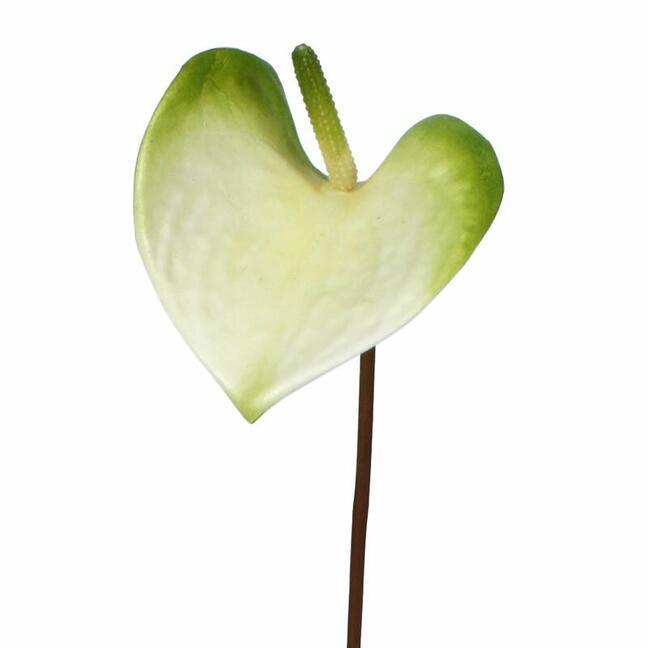 Umetna veja Anthurium zeleno-bela 50 cm
