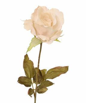 Umetna veja Kremna vrtnica 60 cm