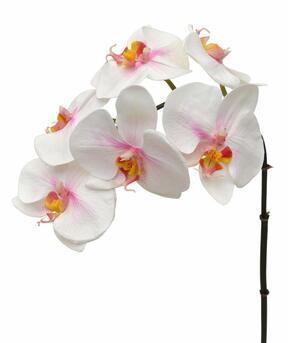 Umetna veja orhideje rožnato-bela 55 cm