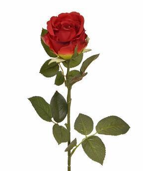 Umetna veja Rdeča vrtnica 74 cm