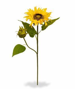 Umetna veja Sončnica 55 cm