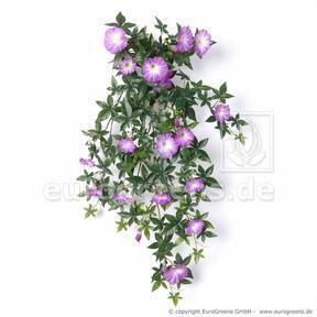 Umetna vitica petunije vijolična 75 cm