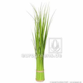 Umetni snop trave Navadna trstika 45 cm