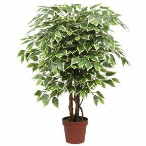 Umetno drevo Ficus 110 cm