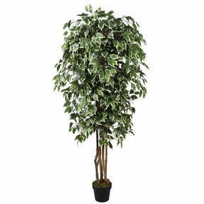 Umetno drevo Fikus Benjamin zeleno belo 170 cm