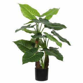 Umetno drevo Taro Araceae 80 cm