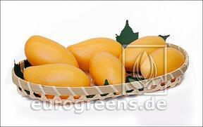 Umetno rumeno mango